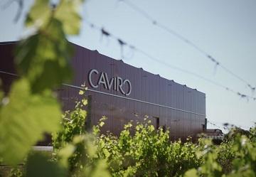 Il Gruppo Caviro vince il Premio Impresa Ambiente
