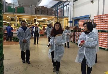 Agrumi e kiwi, focus sulle visite degli ispettori cinesi