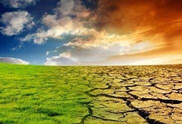 cambiamenti climatici: effetti e indicazioni per una frutticoltura sostenibile